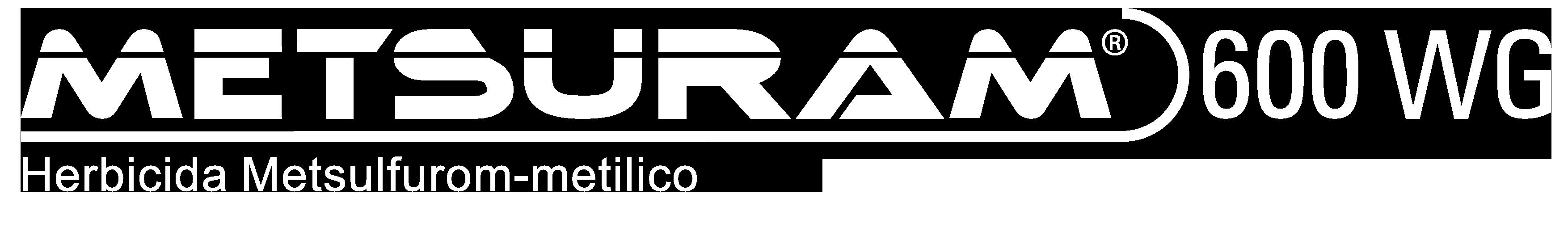RTM_Brazil_ProductLogo_White_Metsuram_600_WG